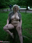 Barby. Toys in the Woods Free Pic