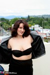 Reba. Up On The Roof Free Pic 7
