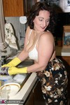 Reba. Lets Do Some Dishes Free Pic 16