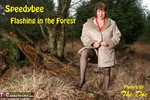 SpeedyBee. Flashing In The Forest Free Pic 1