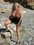 Adonna. Brown Top Free Pic