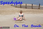 SpeedyBee. On The Beech Free Pic
