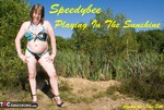 SpeedyBee. Playing In The Sunshine Free Pic