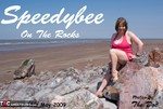 SpeedyBee. Speedy Bee On The Rocks Free Pic 1