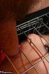 TraceyLain. Caged Pt2 Free Pic 8