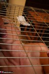 TraceyLain. Caged Pt2 Free Pic