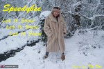 SpeedyBee. Let It Snow, Let It Snow, Let It Snow... Free Pic 1