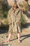 SpeedyBee. Fur Coat On The Beach Free Pic 3