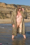SpeedyBee. Wet Fur Coat Free Pic 10