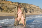 SpeedyBee. Wet Fur Coat Free Pic 12