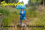 SpeedyBee. Famous Blue Raincoat Free Pic 1