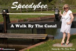 SpeedyBee. A Walk By The Canal Free Pic