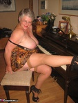 GirdleGoddess. Sexy GirdleGodess By The Piano Free Pic 13