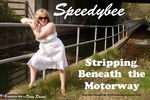 SpeedyBee. Stripping Beneath The Motorway Free Pic