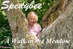 SpeedyBee. A Walk In The Meadow Pt1 Free Pic 1