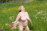 SpeedyBee. A Walk In The Meadow Pt1 Free Pic