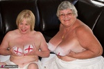 SpeedyBee. The England Supporters Free Pic