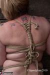 SpeedyBee. All Tied Up Free Pic 4