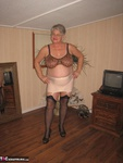 Girdle Goddess. Beige Girdle Free Pic 12