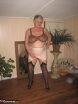 Girdle Goddess. Beige Girdle Free Pic 14