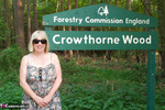 SpeedyBee. Crowthorne Wood Free Pic 1