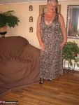 GirdleGoddess. Leopard Print Dress 2 Free Pic 1