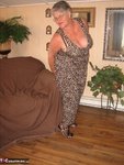 GirdleGoddess. Leopard Print Dress 2 Free Pic 3