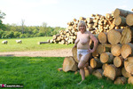 SpeedyBee. By The Log Pile Free Pic