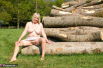 SpeedyBee. By The Log Pile Free Pic 6