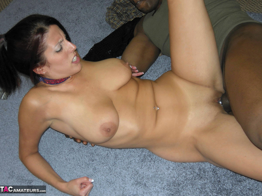 Black breeding cock wife