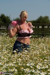 Melody. Summer Meadow Free Pic 2