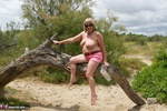 SpeedyBee. In The Dunes Free Pic