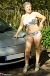 Savana. Car Strip Free Pic