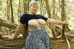 Savana. In The Forest Free Pic