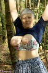 . In The Forest Free Pic 15