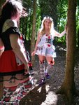 Tempest. A Walk In The Woods With Alice In Wonderland Free Pic 10