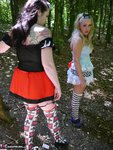 Tempest. A Walk In The Woods With Alice In Wonderland Free Pic