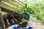 Barby Slut. Little Barby On The Farm Free Pic 14