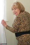 SpeedyBee. Leopard Print Dress Free Pic 7
