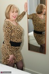 SpeedyBee. Leopard Print Dress Free Pic 10