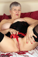 Savana. Red & Black Basque Free Pic 18