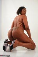 Richard Mann. Taking on busty black pornstar Carmen Hayes Free Pic 10