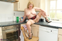 SpeedyBee. Stripping In The Kitchen Free Pic 20