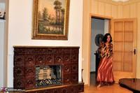 Diana Ananta. Fireplace Free Pic 1