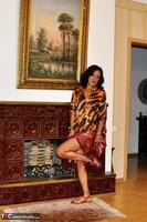 Diana Ananta. Fireplace Free Pic 2