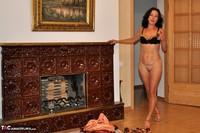 Diana Ananta. Fireplace Free Pic 8