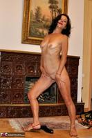 Diana Ananta. Fireplace Free Pic 12