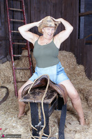 . The Barn Free Pic 8
