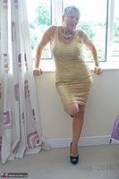 . Gold Dress Free Pic 4