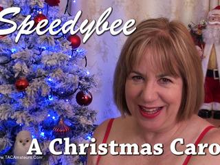SpeedyBee - A Christmas Carol Video